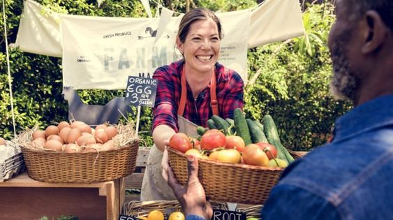 Farm-to-Table Movement in Local Restaurant: Everything You Need to Know